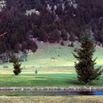 Golf1 150x150 MONTANA   Fairmont Hot Springs Resort and Estates Condominiums