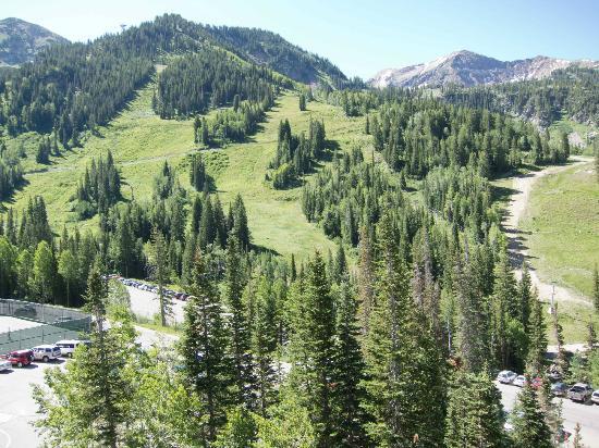 Iron Blosam Lodge At Snowbird Summer Mountain Condo Rentals